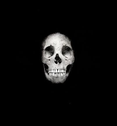 Hirst Skull 2