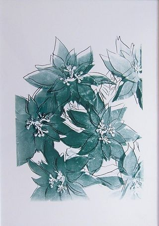 Poinsettias, UP 39.16