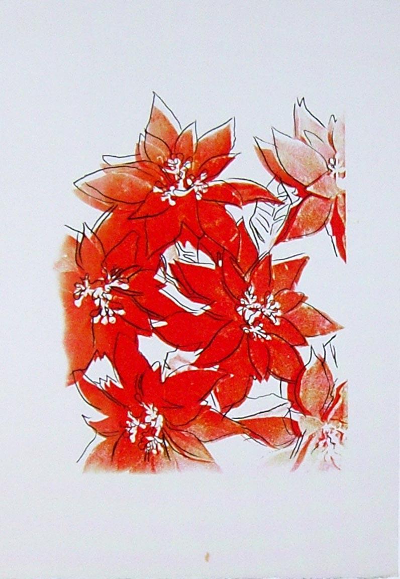 Poinsettias, UP 39.09